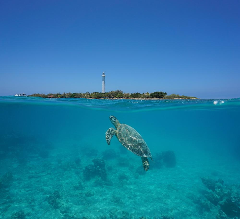 Amedee Lighthouse Island   ©Seaphotoart / Shutterstock