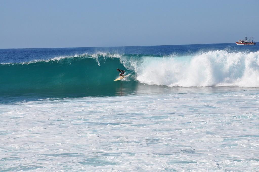 Surfs up!| © Elliot Jones/Flick