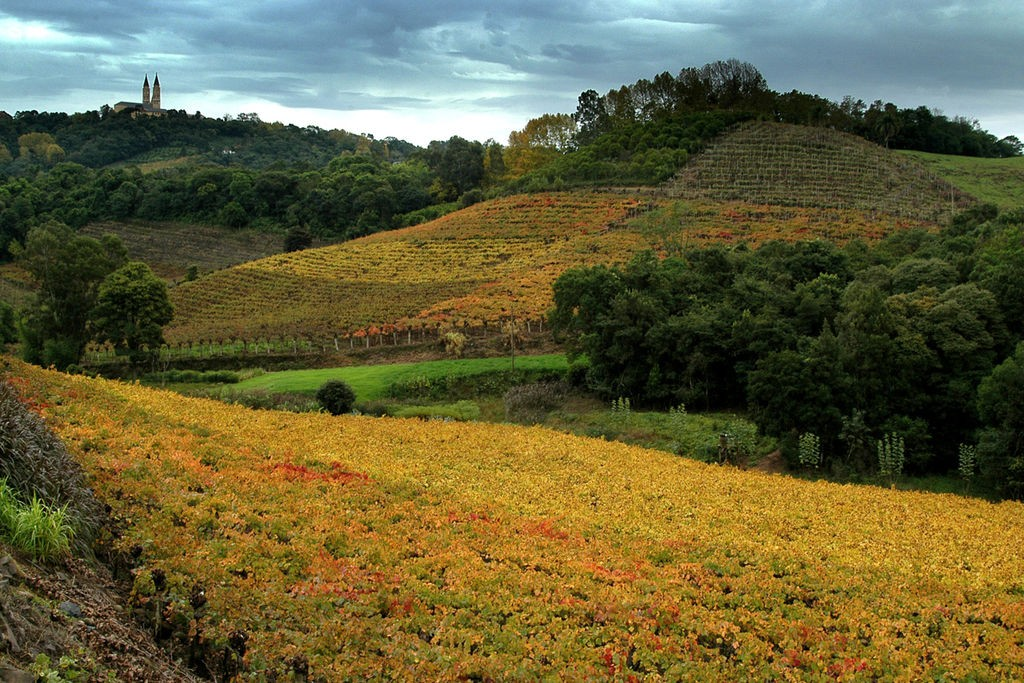 Vale dos Vinhedos / © Germano Roberto Schüür / Wikimedia Commons