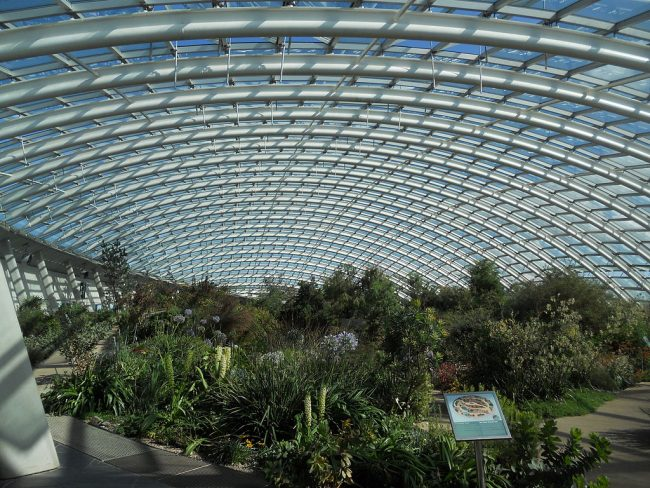 Greenhouse at The National Botanic Garden of Wales. Credit: Mikani/Wikimedia Commons