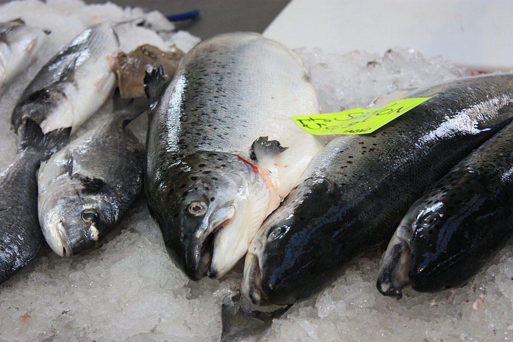 Fish at St George's Market, Belfast | © Ardfern / Wikimedia Commons