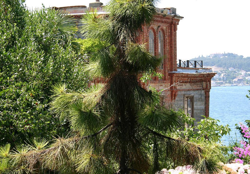 Imagen Estambul 1024Px Trotsky House Istanbul