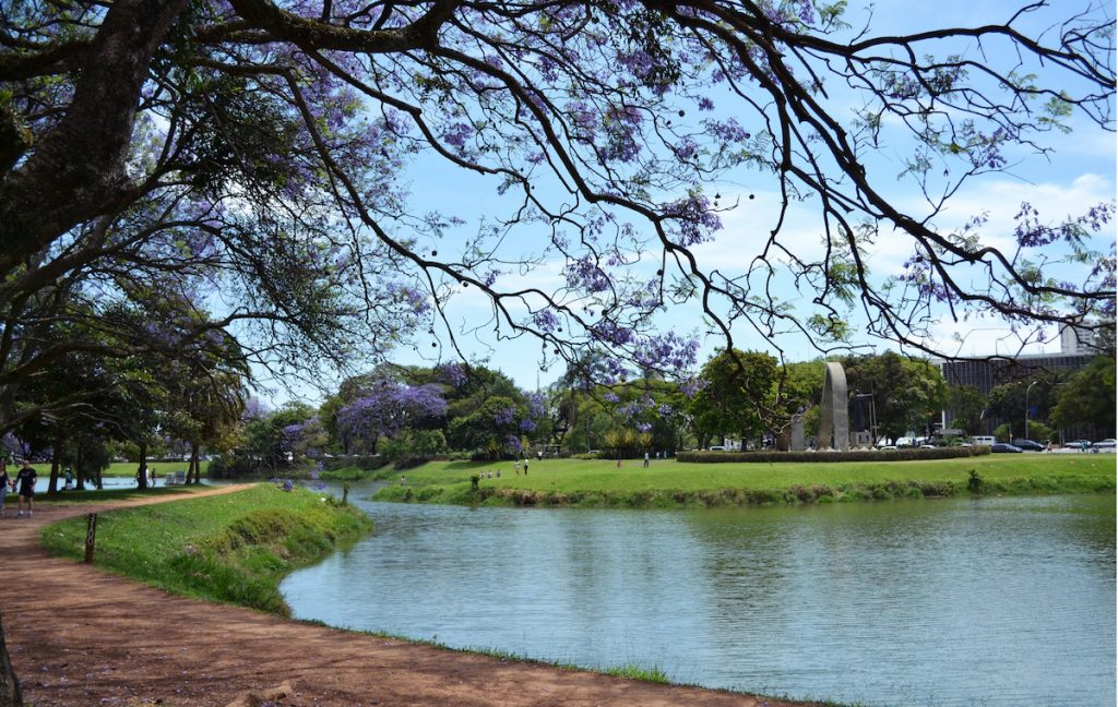 Ibirapuera Park   © Gabriela Sakamoto / Flickr