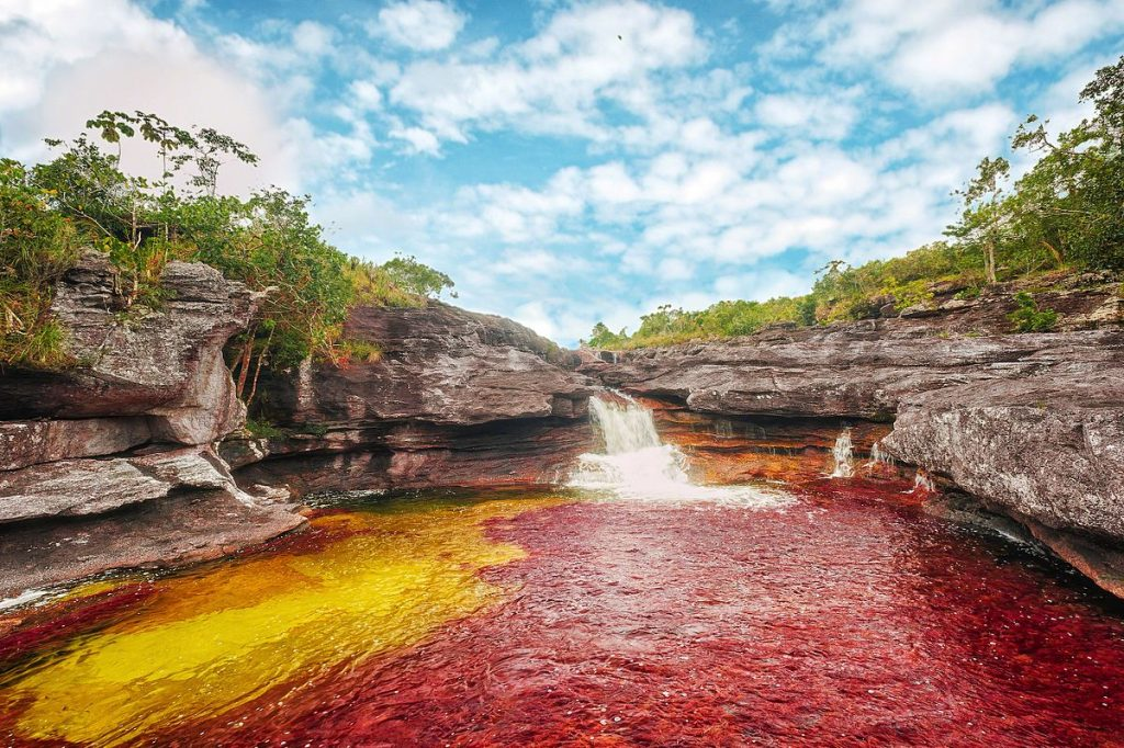 "<a href=""https://commons.wikimedia.org/wiki/Category:Caño_Cristales#/media/File:CAÑO_CRISTALES_–_LOS_OCHOS_01.jpg"">Caño Cristales, Colombia 