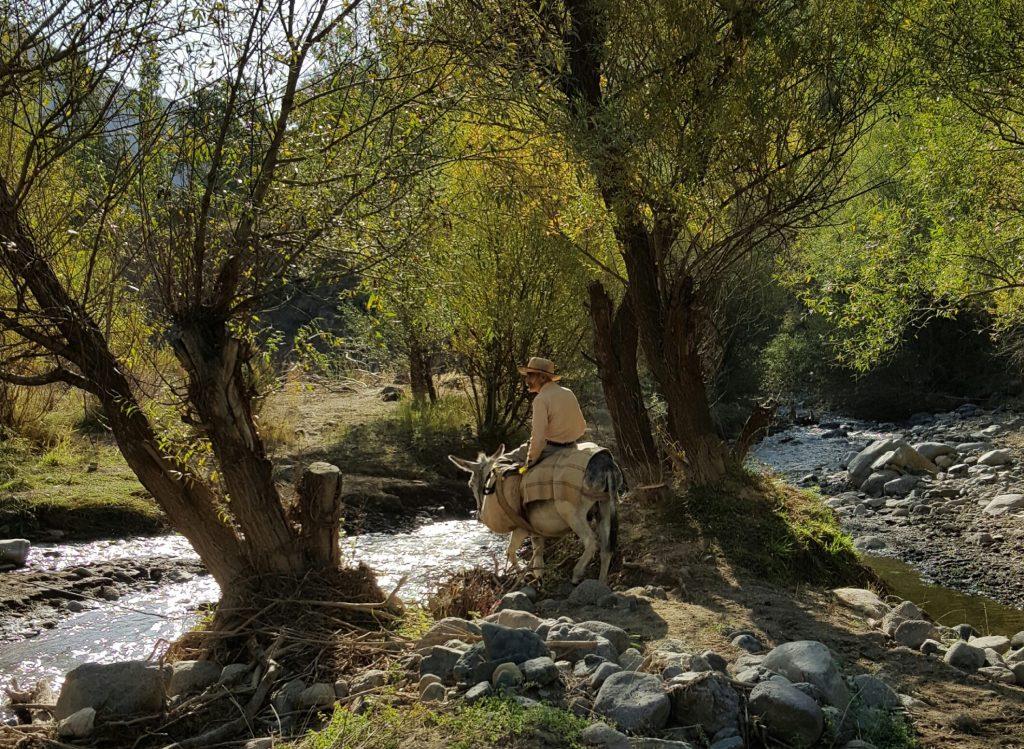 The village of Durvan is located in Taleghan's 'green valley' | © Pontia Fallahi