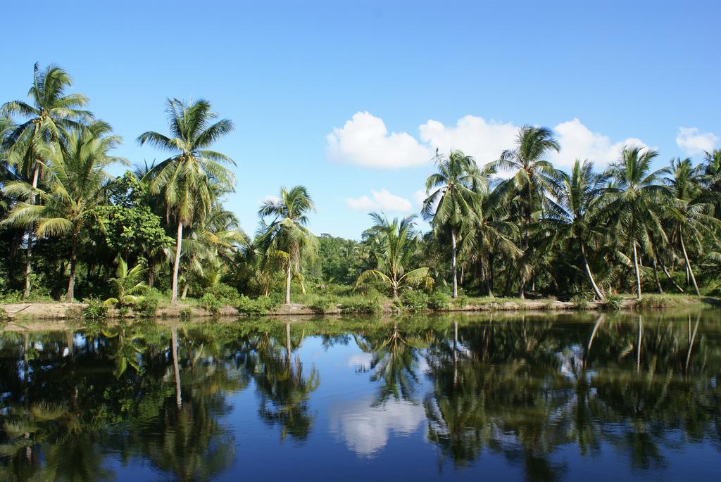 Pulau Ubin | © alex.ch / Flickr