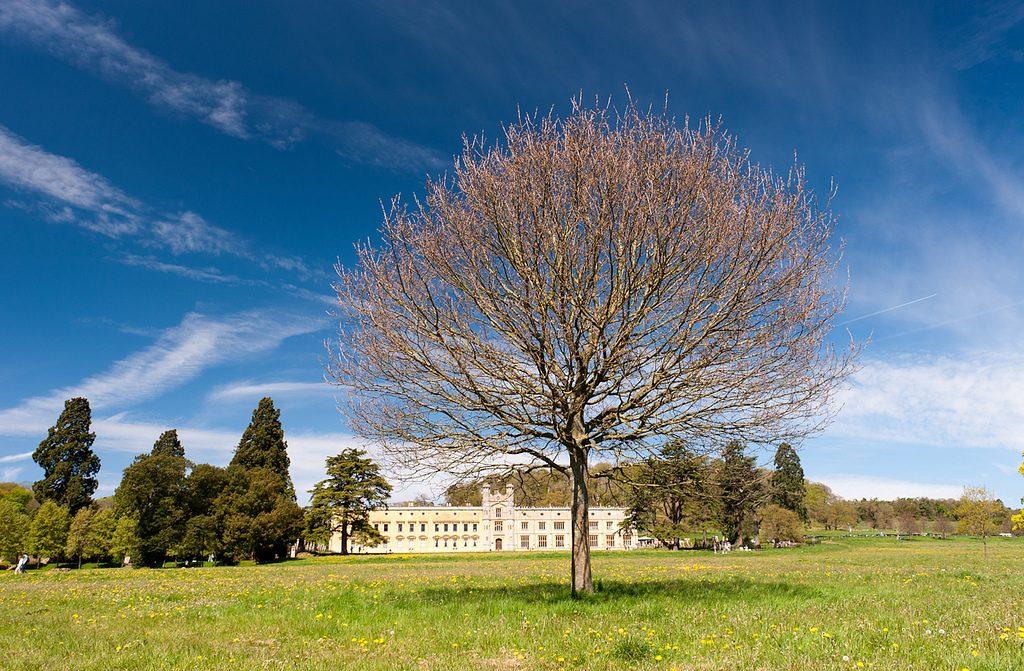 Ashton Court| © George Bladon/Flickr
