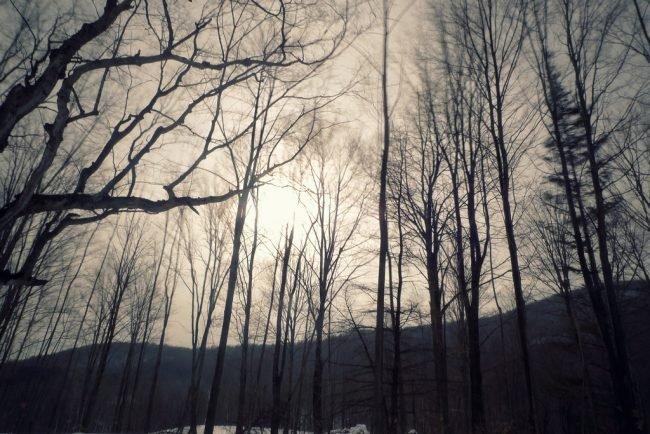 Dorset, Vermont | © Peter Sheik/Flickr