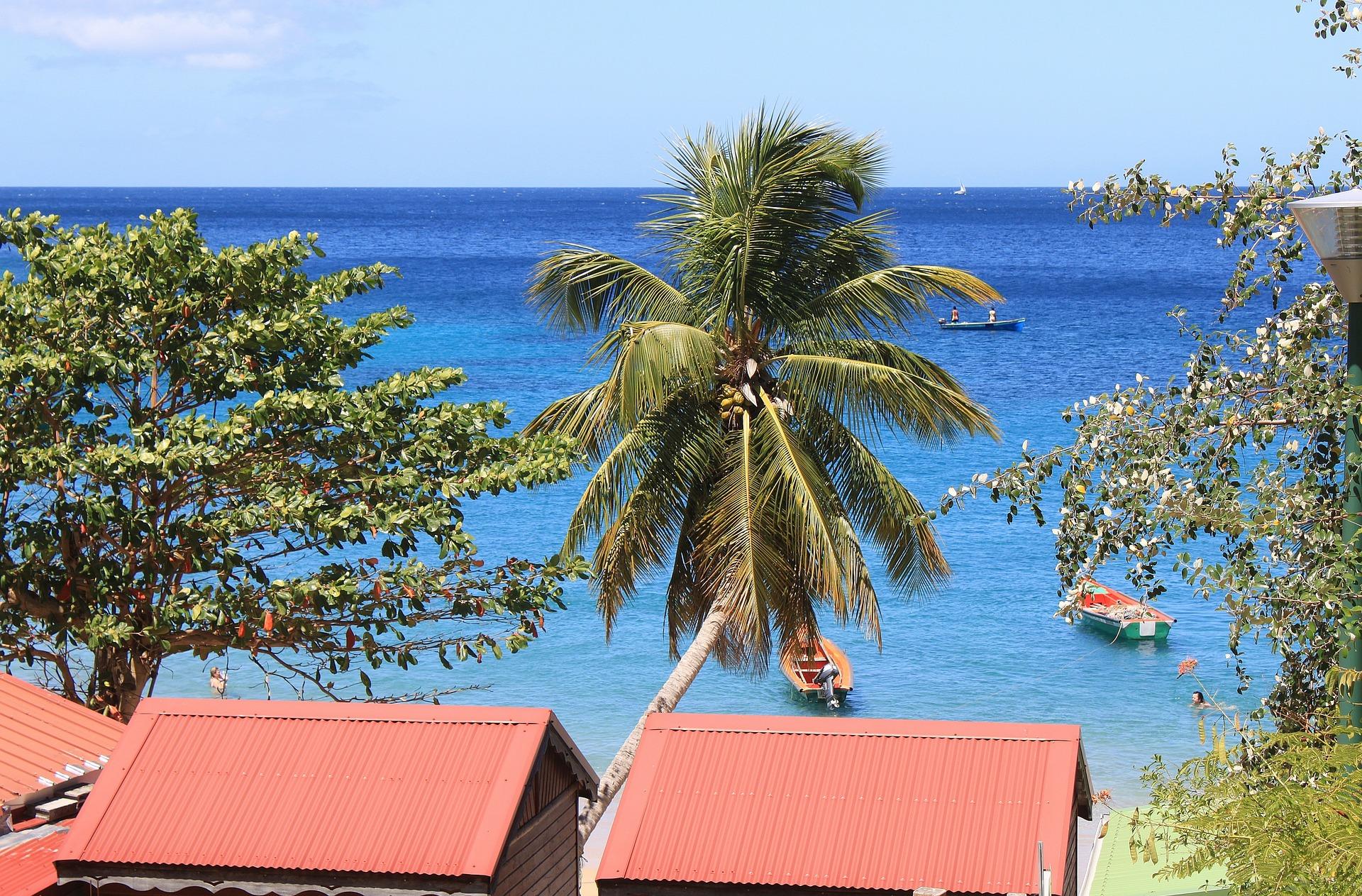 Martinique   © Français/Pixabay