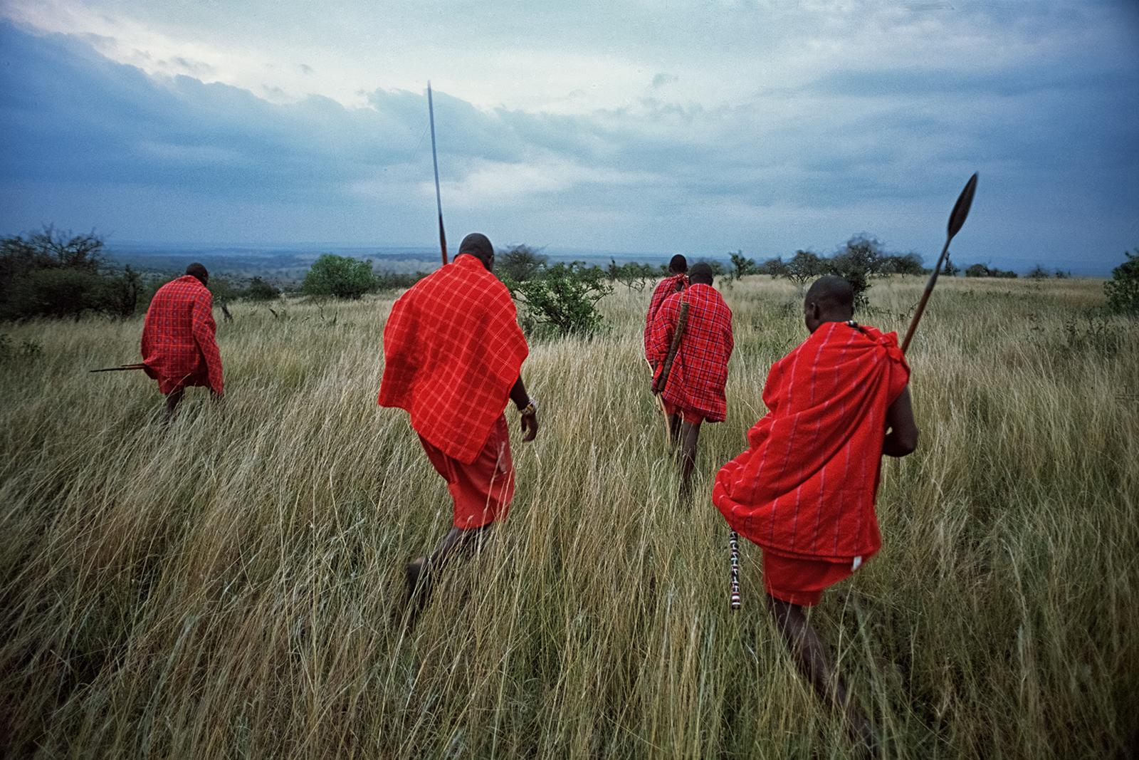 Masai Mara © Matjaž Krivic