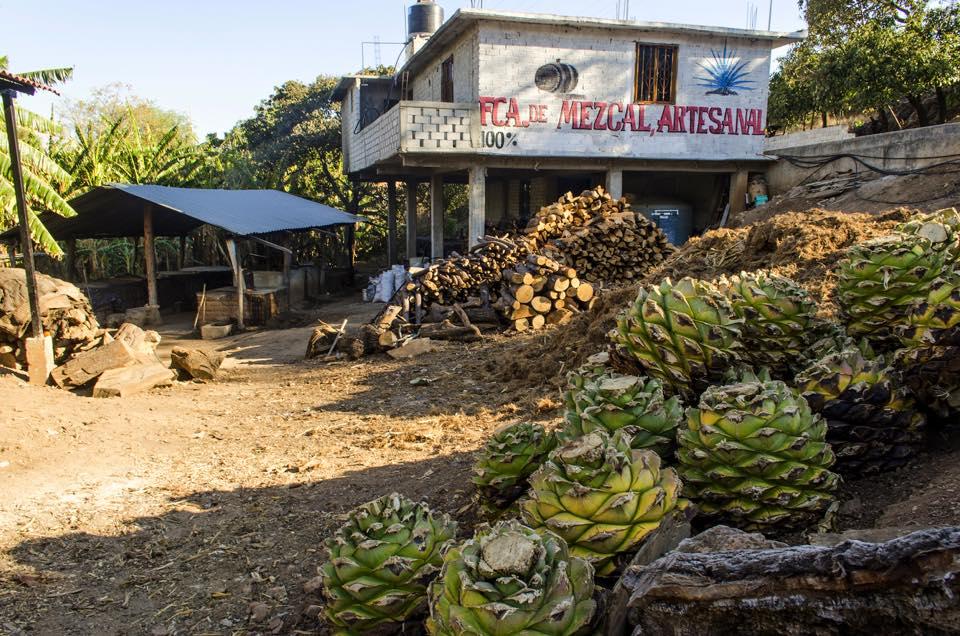 Mezcaleria in Oaxaca   © Cantimplora Travel