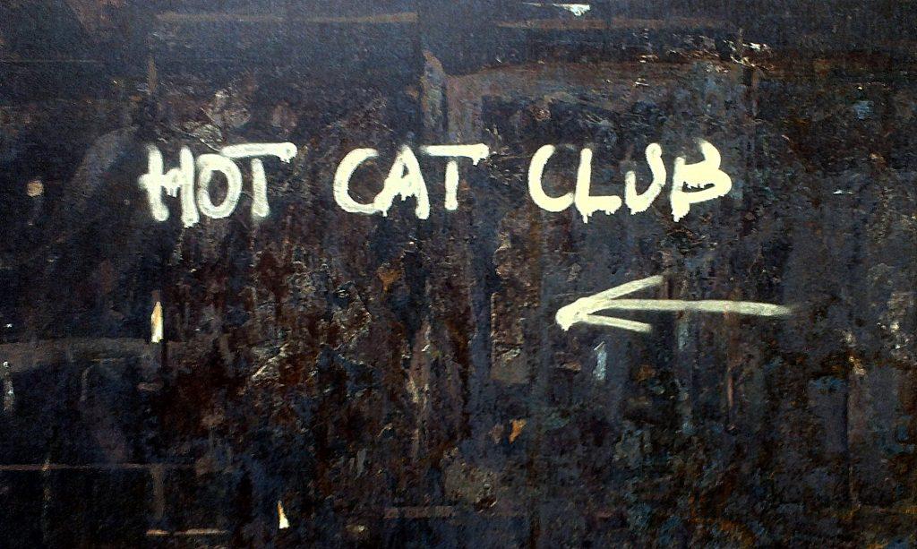 Hot Cat Club in Fangjiu Hutong