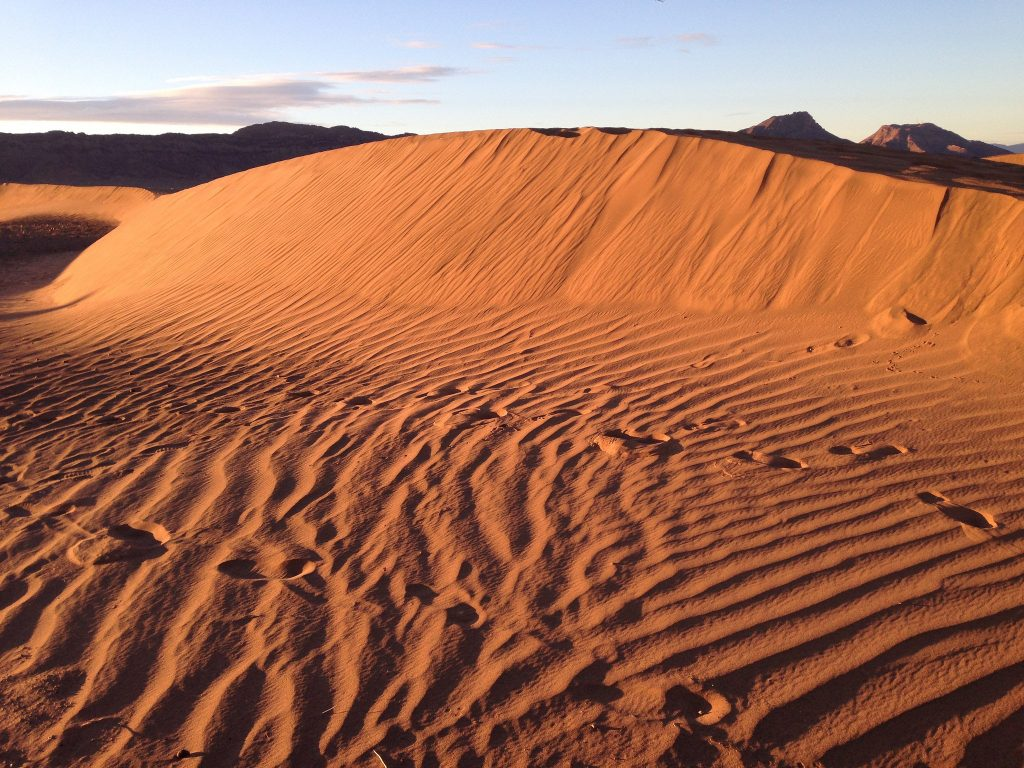 Zagora dunes