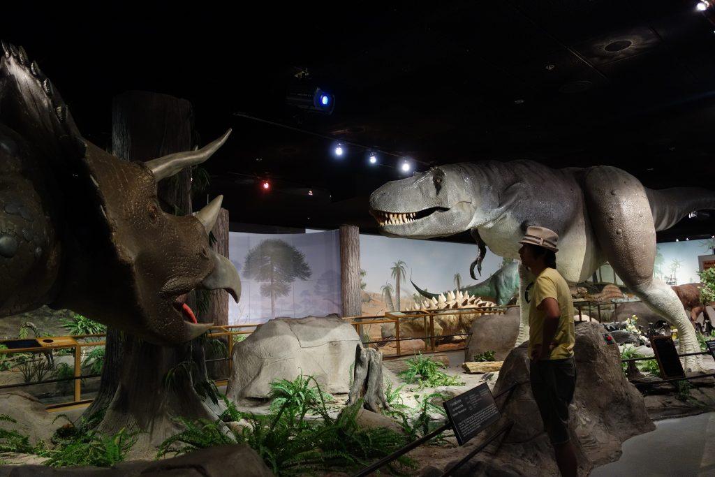 Las Vegas Natural History Museum | © Kennejima/Flickr