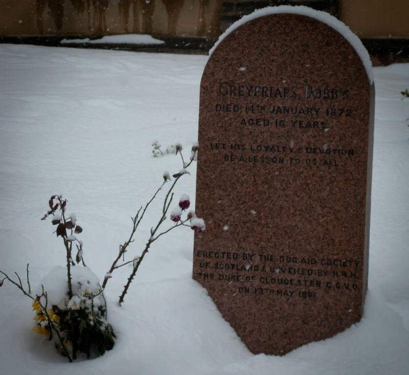 Greyfriars Bobby Headstone   © Tony Austin/Flickr