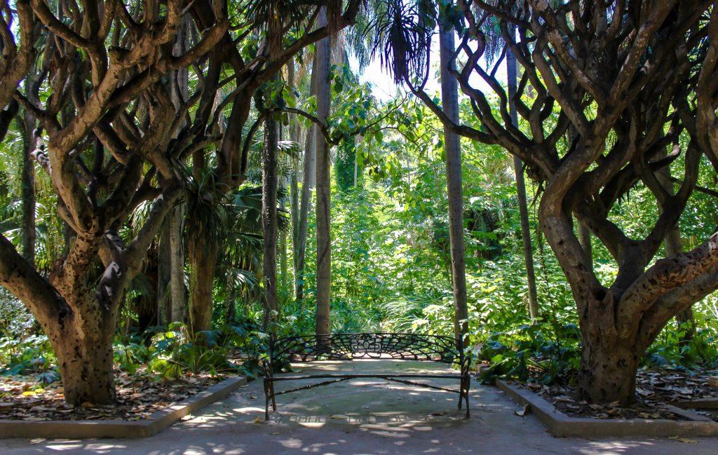 El Hamma Garden in Algiers
