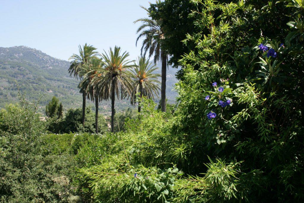 oller Botanical Gardens © Sten / Wikimedia Commons