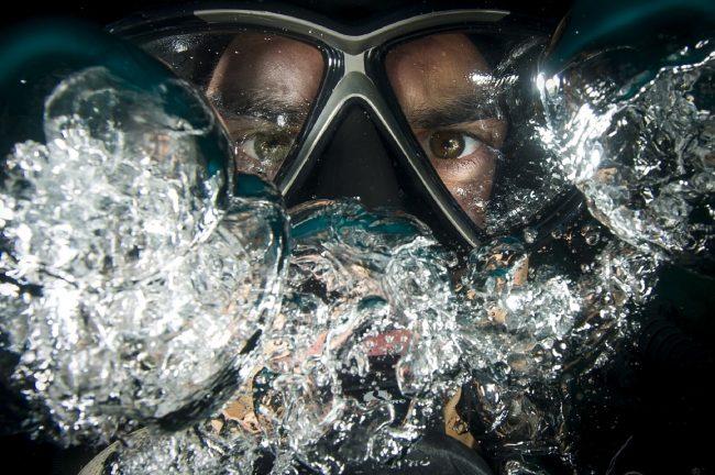 The Best Scuba Diving Spots In Playa Del Carmen