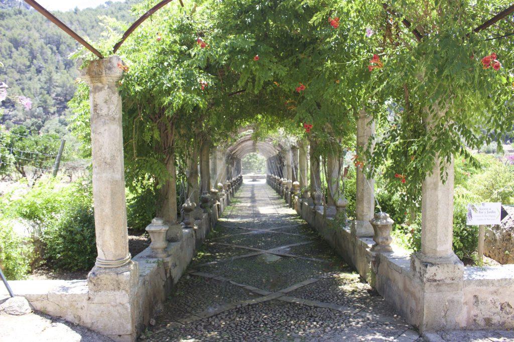 Alfabia Gardens © Leon Beckenham