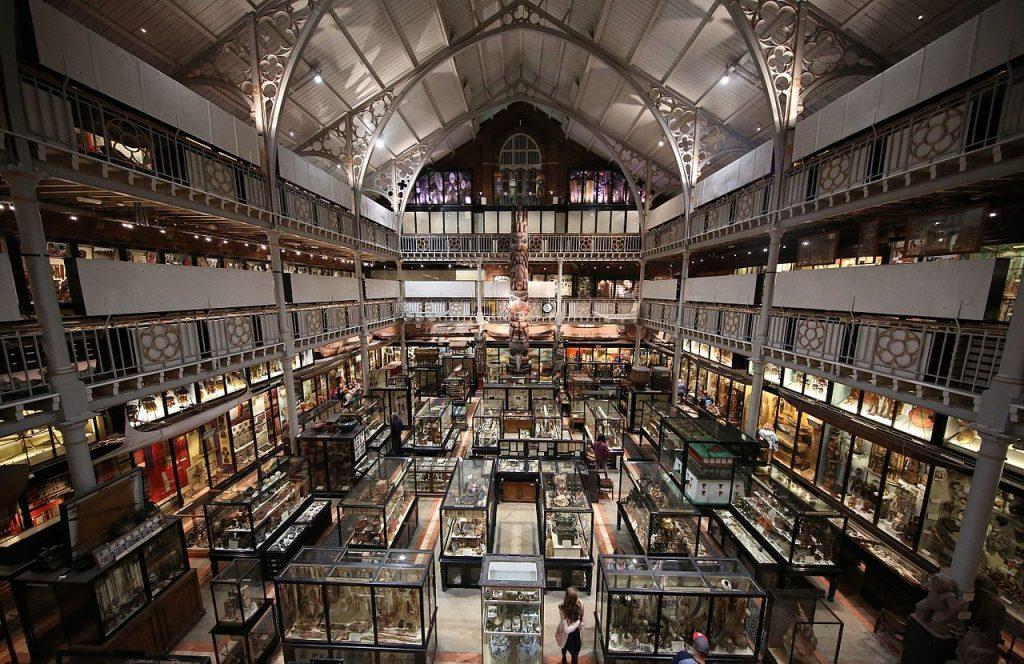 Interior of Pitt Rivers Museum | © Geni/WikiCommons