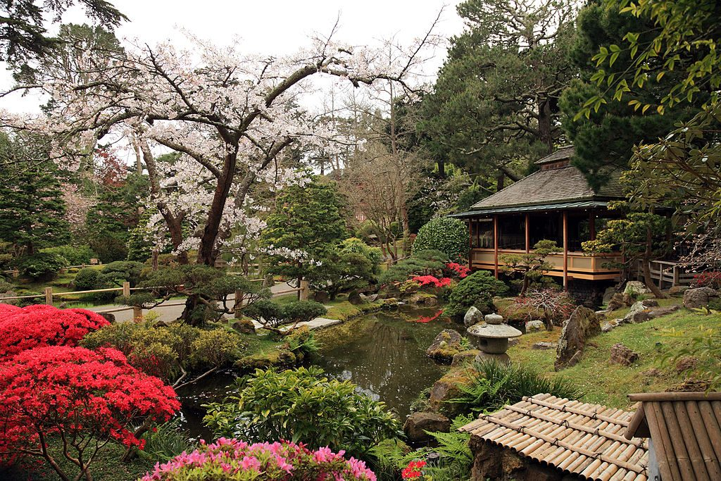 Japanese Tea Garden, San Francisco | © Caroline Culler / Wikimedia Commons