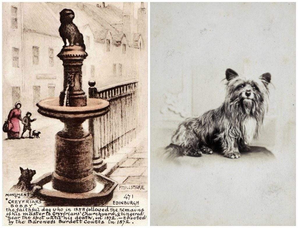 Drawing Of Greyfriars Bobby By Reginald P. Phillimore c.1910 | © WikiCommons // Possible Drawing Of Greyfriars Bobby, Artist Unknown | © National Galleries Of Scotland/Flickr