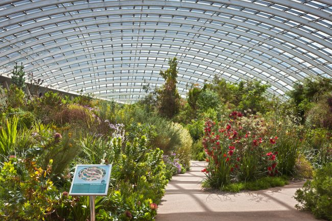 National Botanic Garden Of Wales Visit