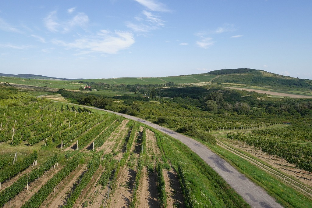 Tokaj wine region, Hungary