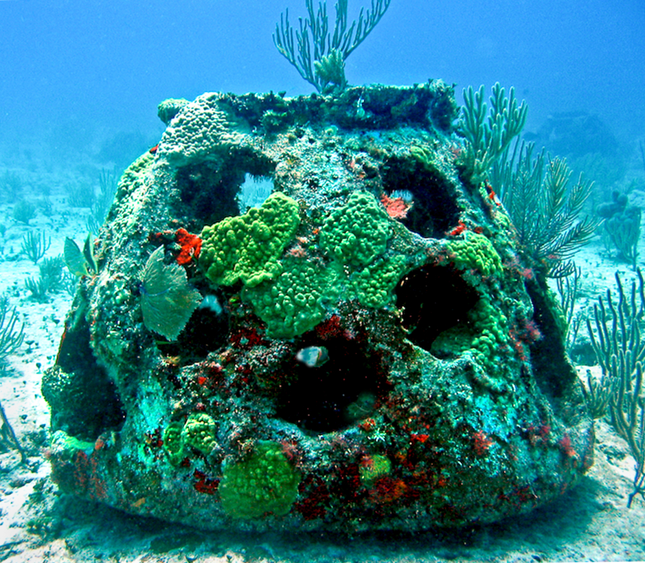 Get Buried In An Artificial Reef In Florida