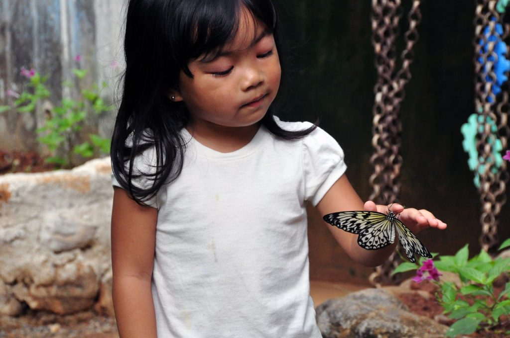 Child with Butterfly | © DenAsuncioner / Flickr
