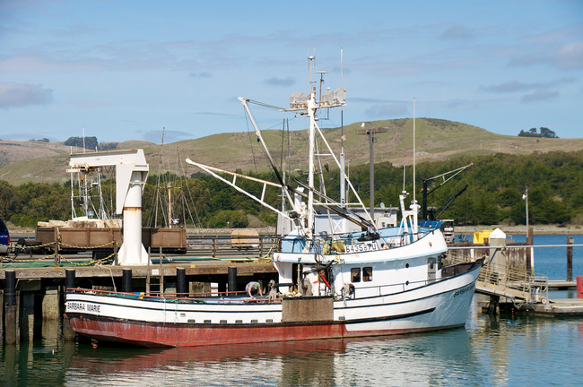 Fishing Boat in Bodega Bay Harbor | ©Don Debold/Flickr
