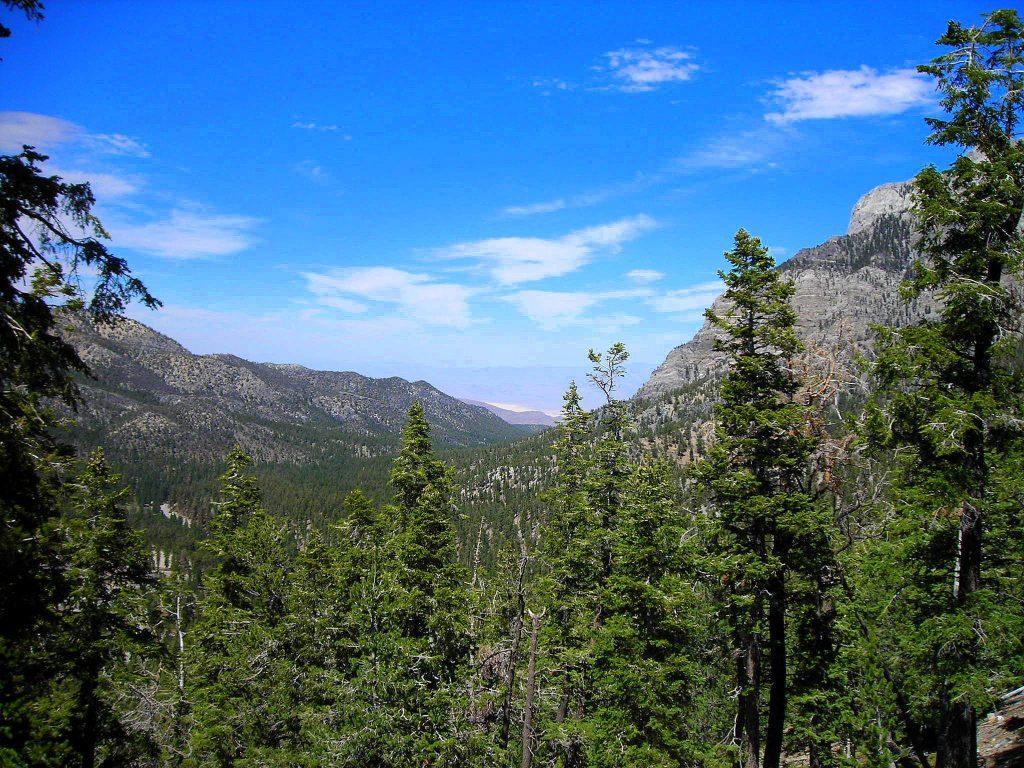 View from Lee Canyon Ski Resort | © Terrisa Meeks/Flickr