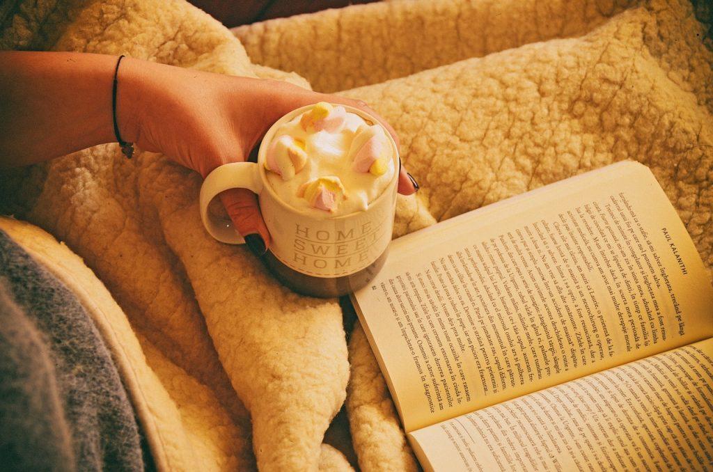 https://pixabay.com/es/libro-desayuno-capuchino-chocolate-2179211/