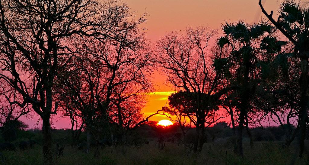 Camping-Mapungubwe-National-Park