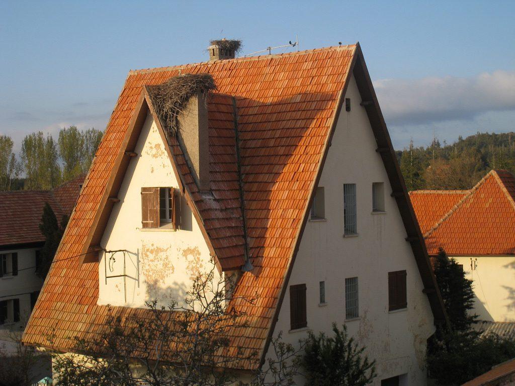 Ifrane architecture