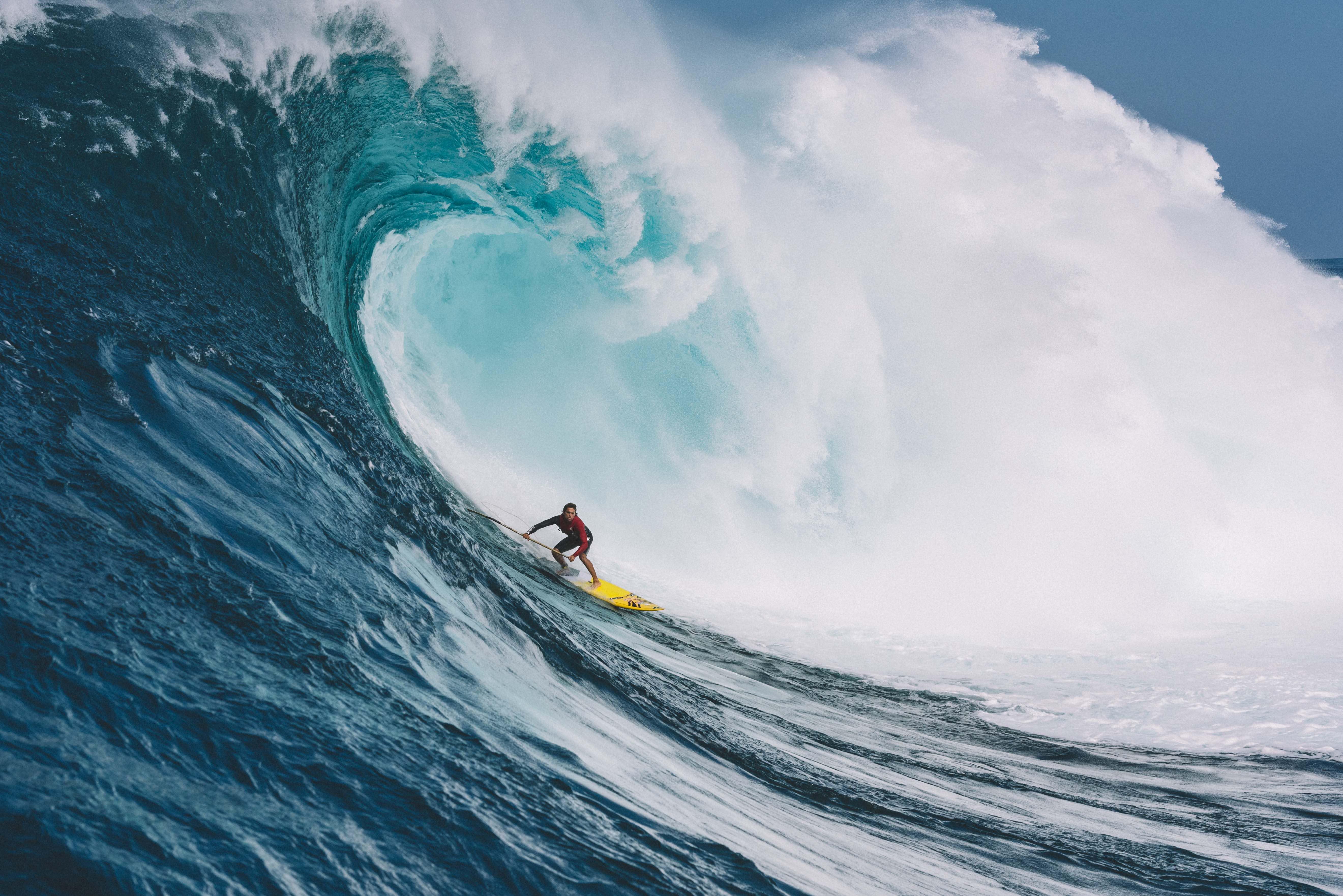 gaza surf club movie