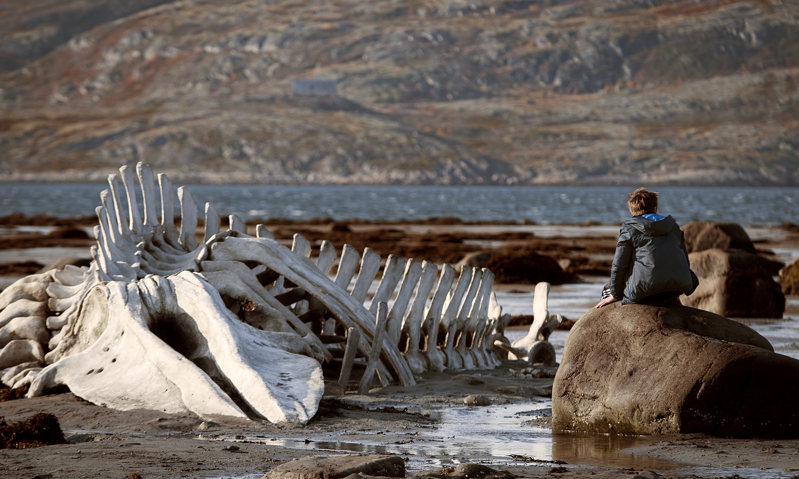 'Leviathan' | © Sony Pictures Classics