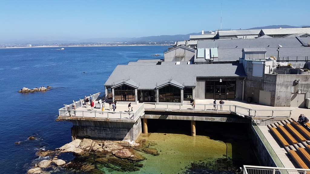 21 Photos That Will Make Monterey Your Next Californian