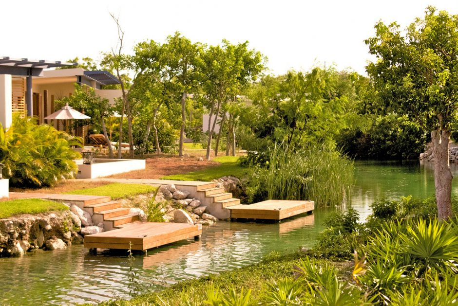 Pet Friendly Hotels Playa Del Carmen