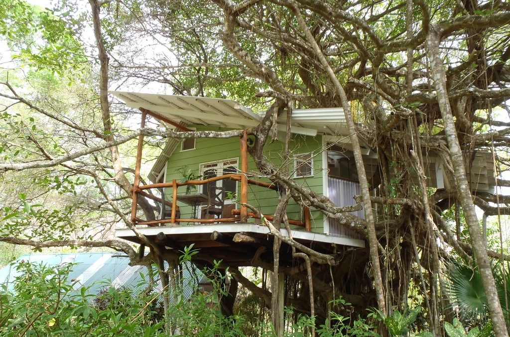 A true treehouse experience | © Courtesy of Playa Selva Tree House Lodge & 15 Magical Treehouses You Wonu0027t Believe Exist in Central America
