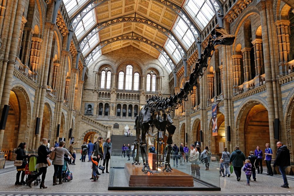Natural History Museum | © Pen_85/Shutterstock