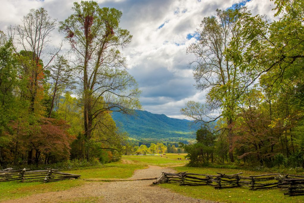 Things to See in Great Smoky Mountains National Park ...