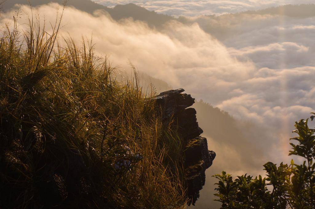 Phu Chi Fa | © tetsuya yamamoto / Flickr