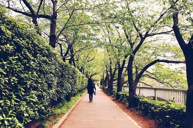 altere asiatische frauen sex in kyoto