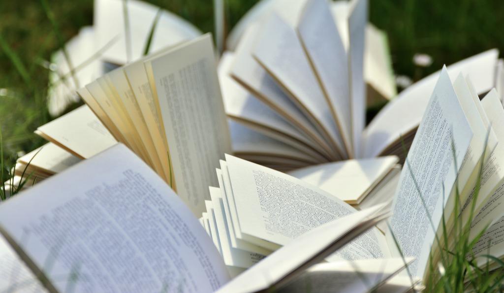 Books | © congerdesign/Pixabay
