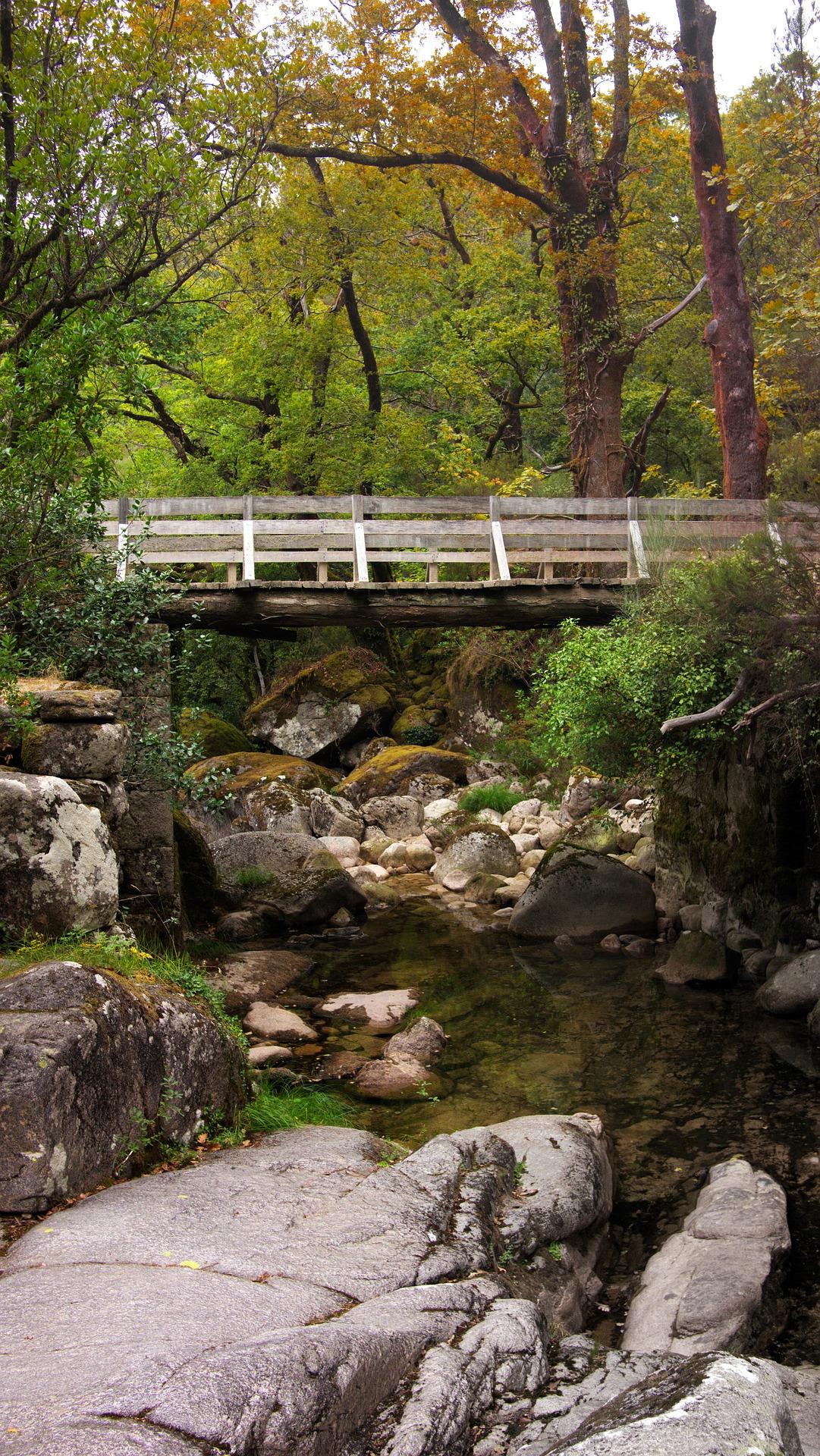 https://pixabay.com/es/puente-naturaleza-paisaje-portugal-1982461/