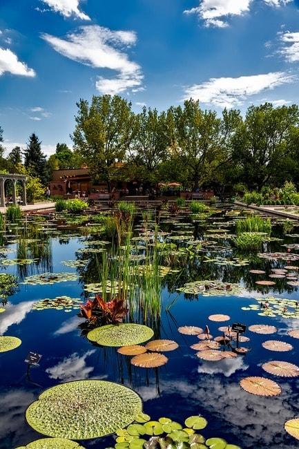 20 Must Visit Attractions In Denver
