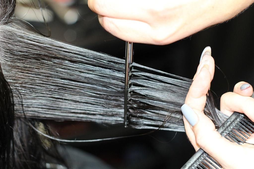 https://pixabay.com/es/peluquer%C3%ADa-cortando-pelo-1516352/