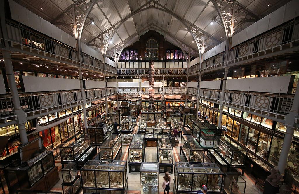 Interior of Pitt Rivers Museum   © Geni/WikiCommons