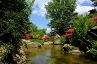 Japanese Garden, Nordpark | ADD / Pixabay